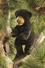 folkmanis_Bear_Black_Cub_puppet_2831.jpg