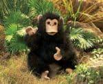 folkmanis_Chimpanzee_Baby_puppet_2877.jpg