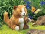 folkmanis_Kitten_Orange_Tabby_puppet_2845.jpg