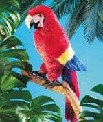 folkmanis_Macaw_Scarlet_puppet_2362.jpg