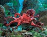 folkmanis_Octopus_Red_puppet_2974.jpg