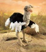 folkmanis_Ostrich_puppet_3026.jpg