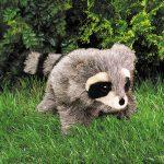 folkmanis_Raccoon_Baby_puppet_2238.jpg